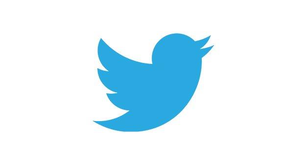 twitter logo design cost